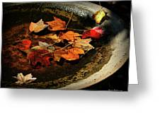 Priceless Leaves Fall Greeting Card