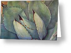 Prickly 2 Greeting Card by Athena  Mantle