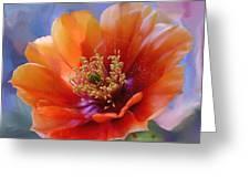 Prickly Pear Bloom Greeting Card