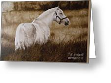 Pride Of The Lough  Greeting Card