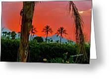Primary Desert Sunset Greeting Card