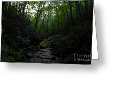 Primordial Forest Greeting Card