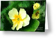 Primrose 2 Greeting Card
