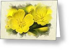 Primrose Flowers Blank Note Card Greeting Card