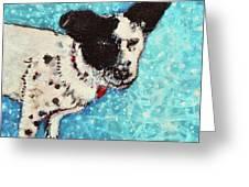 Primrose Water Love Greeting Card