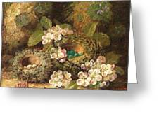 Primroses And Bird's Nests On A Mossy Bank Greeting Card