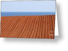 Prince Edward Island Fields 5645 Greeting Card