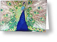 Prince Of The Peacocks Greeting Card