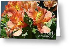 Princess Lillies Greeting Card