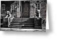 Princeton University Nassau Hall Tigers Greeting Card