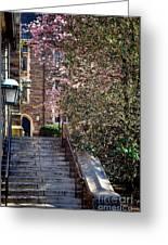 Princeton University Old Stairway Greeting Card