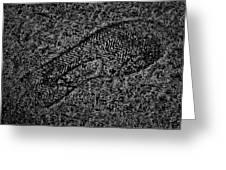 Print On Concrete Greeting Card