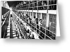 Prison: San Quentin, 1954 Greeting Card