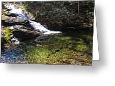 Pristine Stream Pool Greeting Card