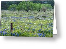Private Property -wildflowers Of Texas. Greeting Card