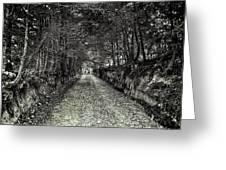 Private Road B Greeting Card