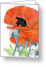 Prize Poppies Greeting Card
