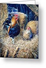 Prized Rooster Greeting Card