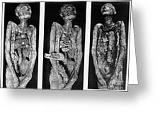 Processes Of Mummification Greeting Card