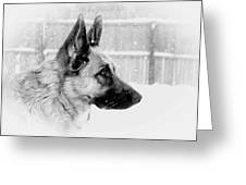 Profile Of A German Shepherd Greeting Card