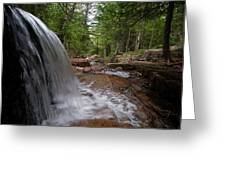 Profile Of The Falls Greeting Card