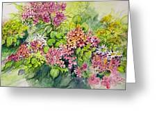 Profusion Of Colors Greeting Card