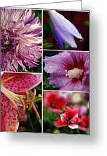 Profusion Greeting Card