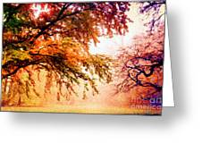 Promise Of A Brighter Future Greeting Card