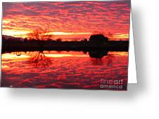 Dramatic Orange Sunset Greeting Card
