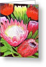 Protea Flowers #240 Greeting Card