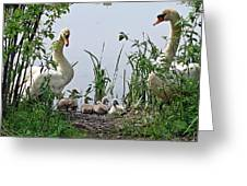 Protective Parents Greeting Card