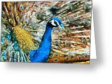 Proud As A Peacock Greeting Card