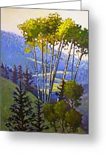 Proud Aspen Greeting Card by Susan McCullough