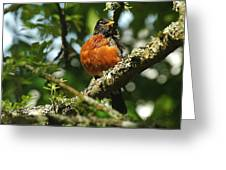 Proud Bird Greeting Card