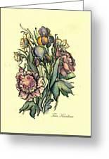 Proud Iris Greeting Card