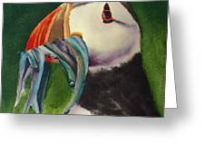 Proud Puffin Greeting Card