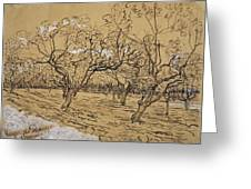 Provencal Orchard Arles  March - April 1888 Vincent Van Gogh 1853  1890 Greeting Card
