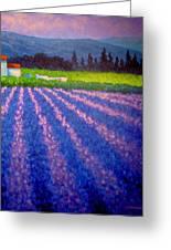 Provence Greeting Card