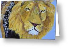 Prowling Lion Greeting Card