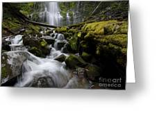 Proxy Falls Oregon 5 Greeting Card