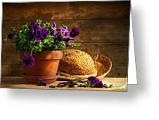 Pruning Purple Pansies Greeting Card by Sandra Cunningham