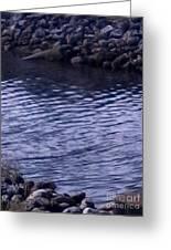Psl Water Greeting Card