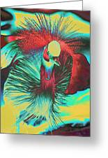 Psychedelic Crested Egret Greeting Card