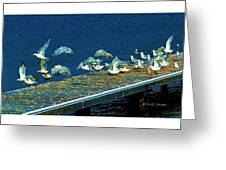 Psychedelic Gulls Greeting Card
