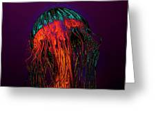 Psychedelic Jellyfish Greeting Card