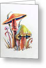 Psychedelic Mushrooms Greeting Card