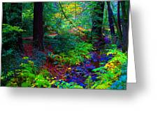Psychedelicosmic Creek On Mt Tamalpais Greeting Card