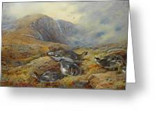 Ptarmigan Danger Aloft By Thorburn Greeting Card