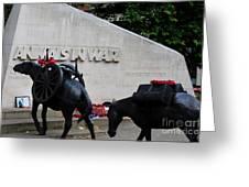 Public Memorial Honoring Military Animals In War London England Greeting Card