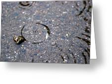 Puddlescape Greeting Card